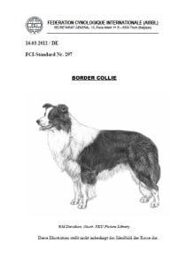 Border Collie FCI Standard