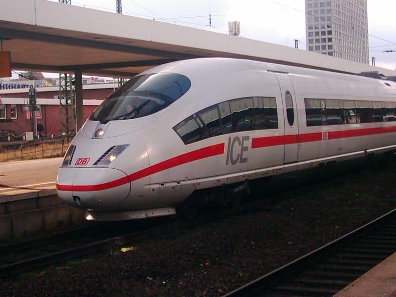 Border Collie im Zug mitnehmen