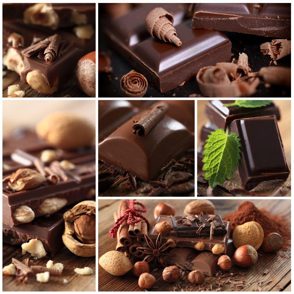 Schokolade als Leckerlie für Border Collie