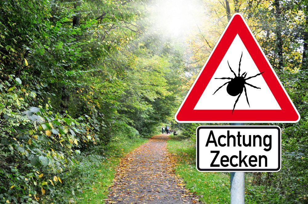 Schild mit Zecken und Wald